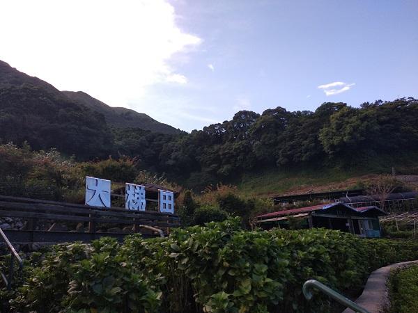 竹子湖大梯田