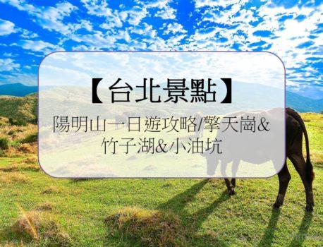 【台北景點】陽明山一日遊攻略/擎天崗&竹子湖&小油坑必訪