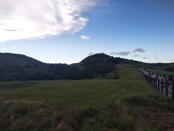 擎天崗大草原